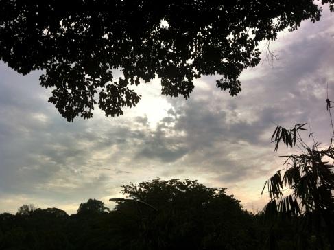 Setting sun on Aug 31 2012, Botanical Gardens, Kuala Lumpur